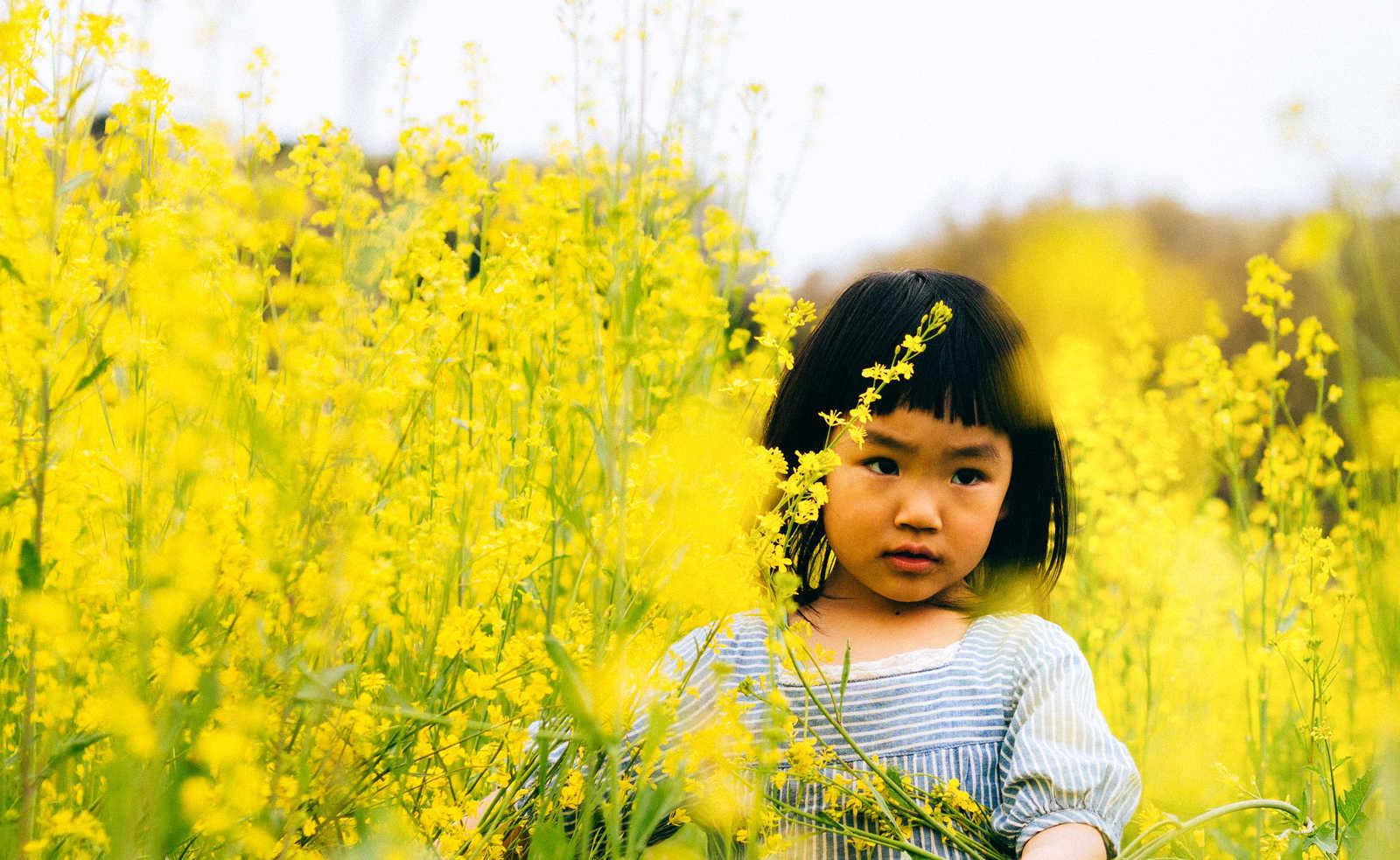 高齢者向けクイズ!『花』の漢字読み問題を解いてみよう!全15問