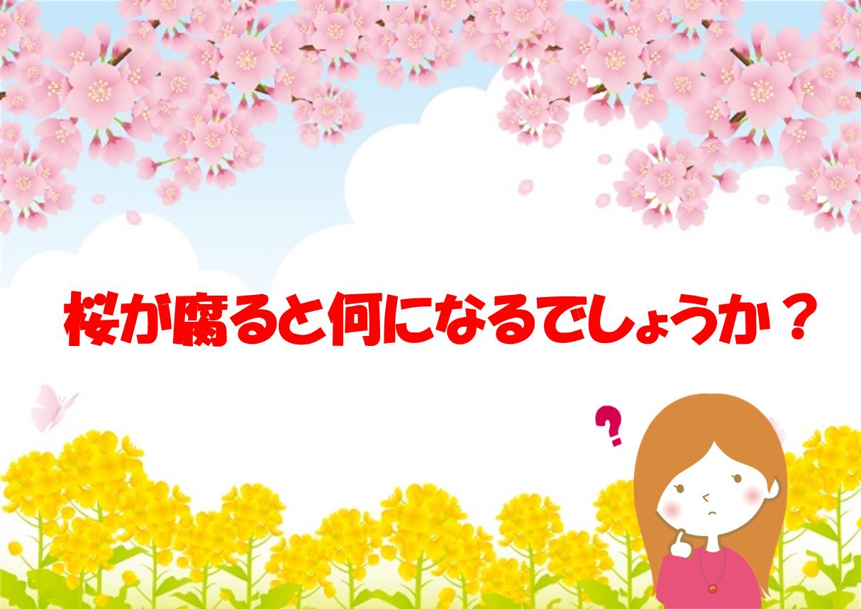 【春に関するなぞなぞクイズ 20問】あなたは何問解ける!?春を感じよう!
