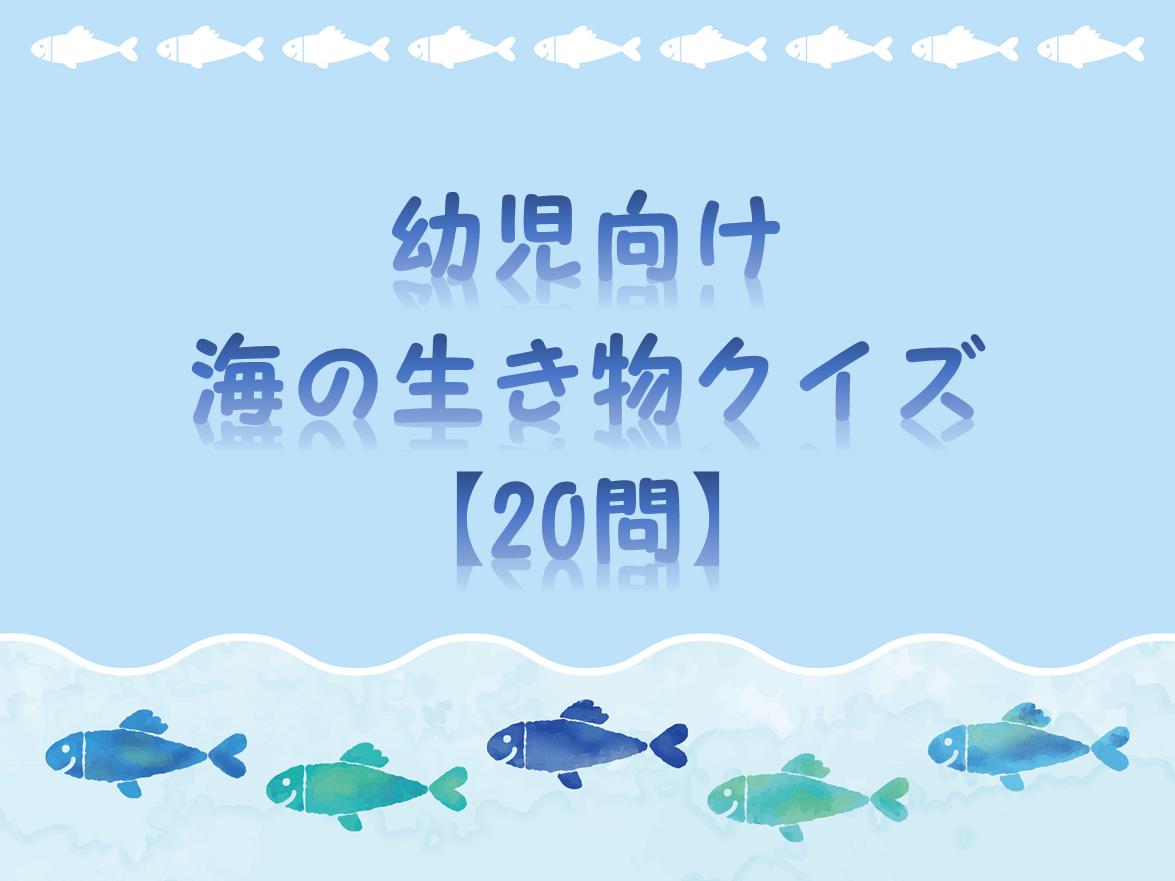 【海の生き物クイズ 30問】簡単・幼児向け!!幼稚園&保育園でおすすめ。