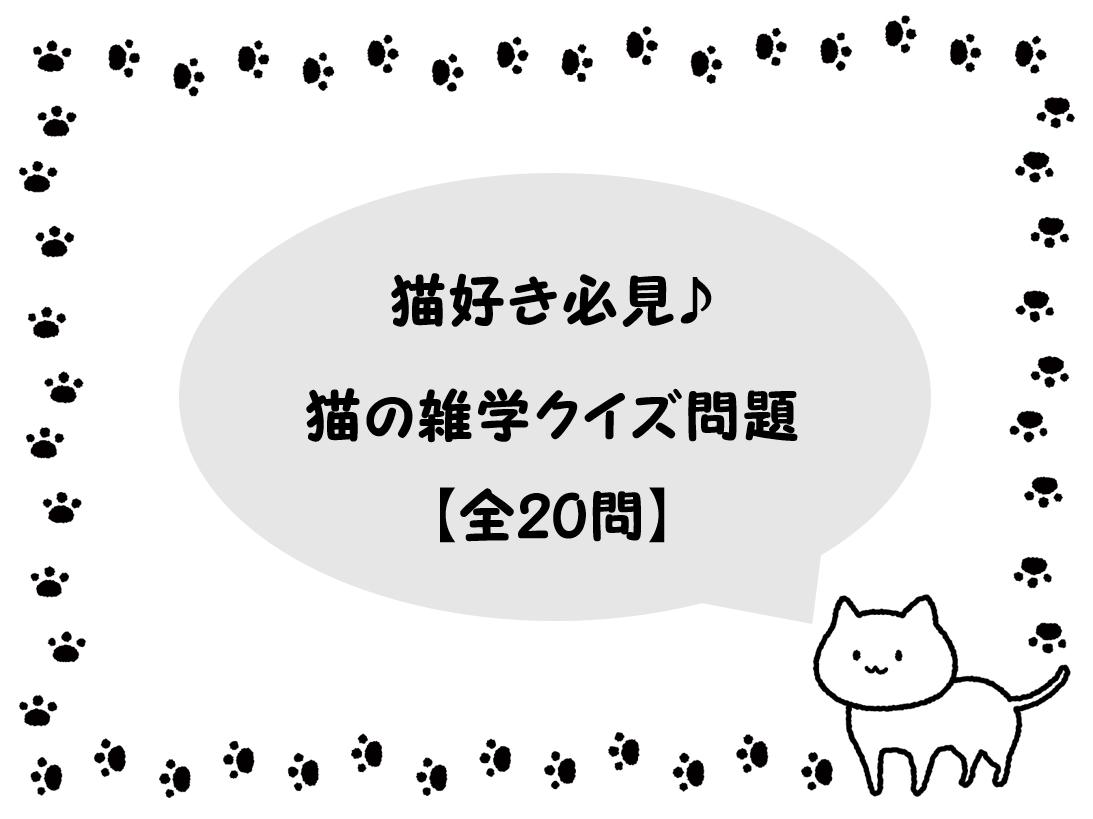 【猫の雑学クイズ問題 20問】猫好き必見!!あなたは何問解ける?三択問題まとめ