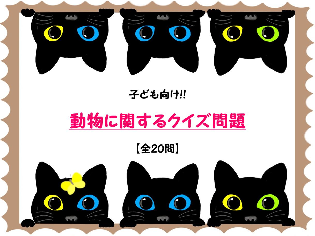 【動物クイズ問題 30問】子ども向け!!簡単&難問を三択形式で紹介!