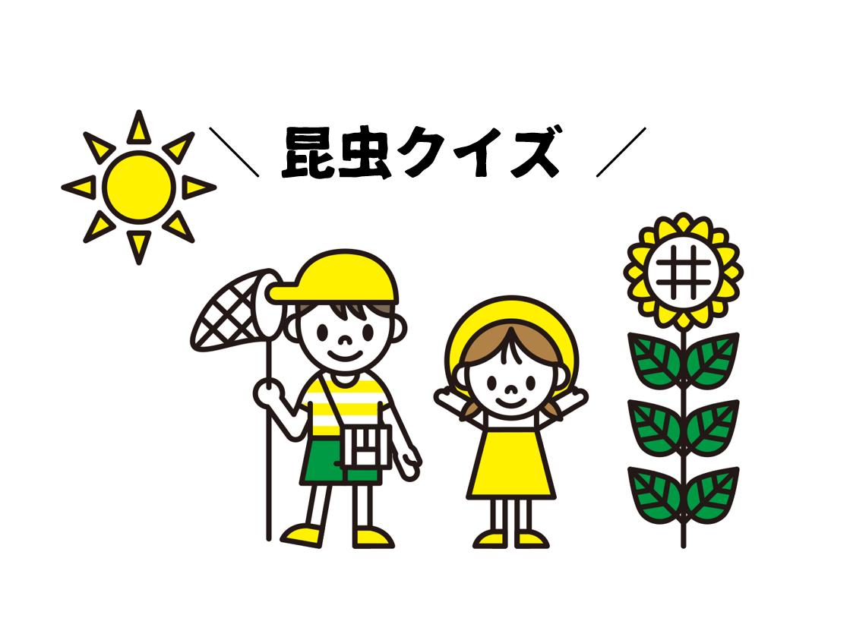 【昆虫クイズ 全20問】子ども向け!!簡単(10問)&難問(10問)を3択形式で紹介!